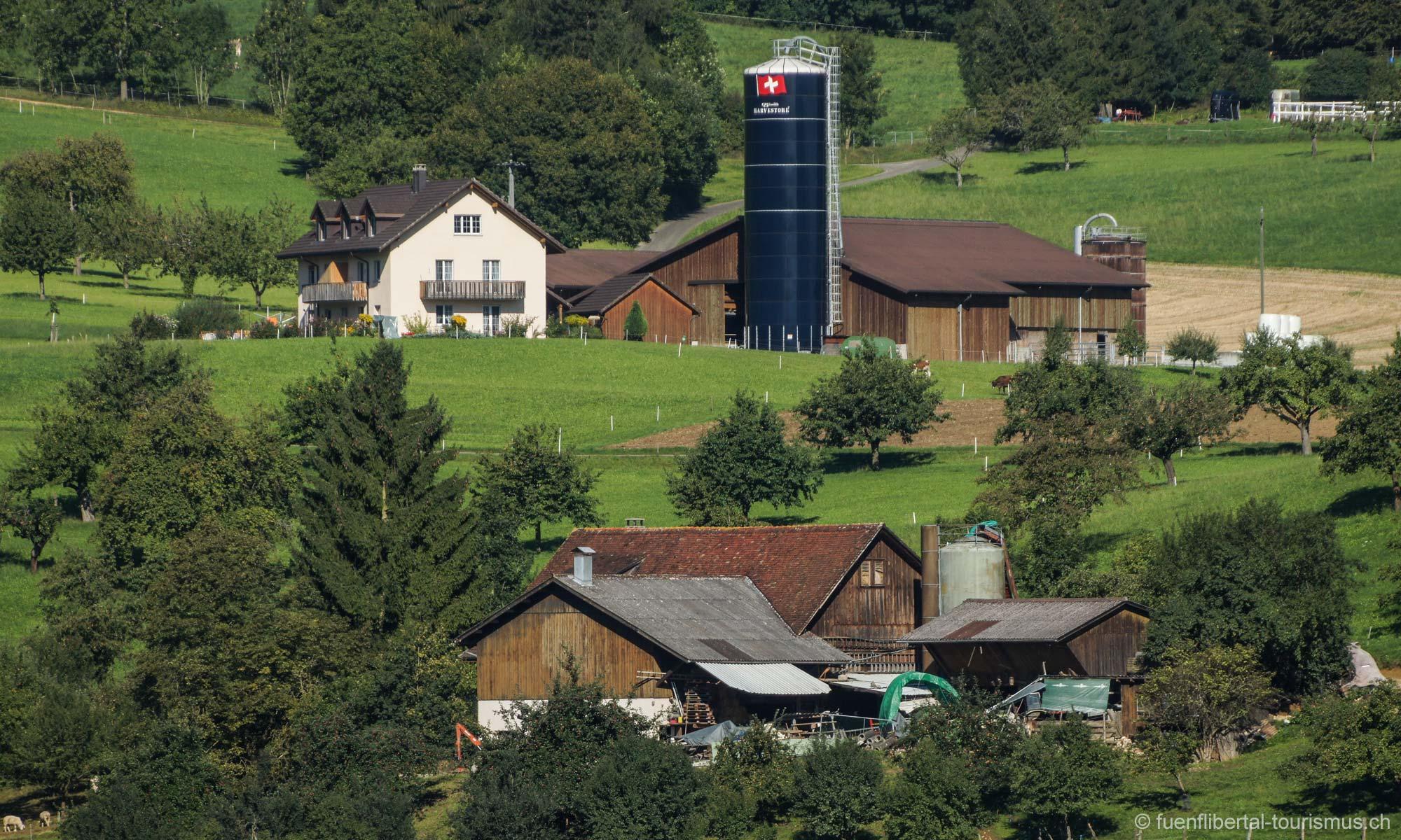Bauernhöfe Ziefen