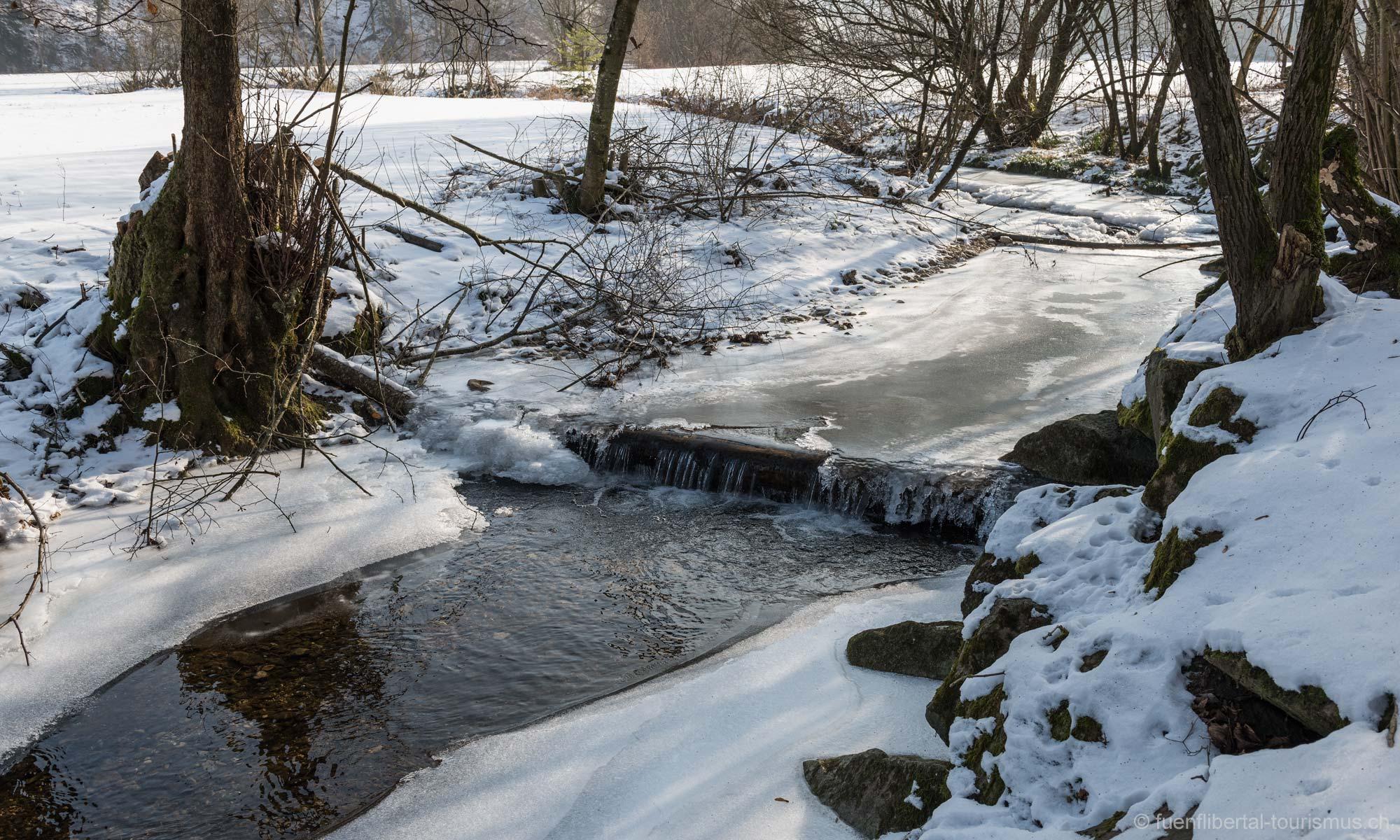 Grosse Kälte in Ziefen, 2017